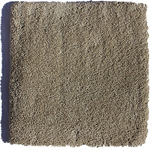 0013964765496 - LUXE EXQUISITE 24 IN. X 24 IN. RESIDENTIAL CARPET TILE (5 TILES / CASE) - $3.50 / SF