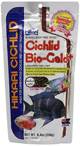 0780231553888 - HIKARI 8.8-OUNCE CICHLID BIO-GOLD AND FLOATING PELLETS, MEDIUM