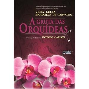 9788572532136 - A GRUTA DAS ORQUÍDEAS - VERA LUCIA MARINZECK CARVALHO